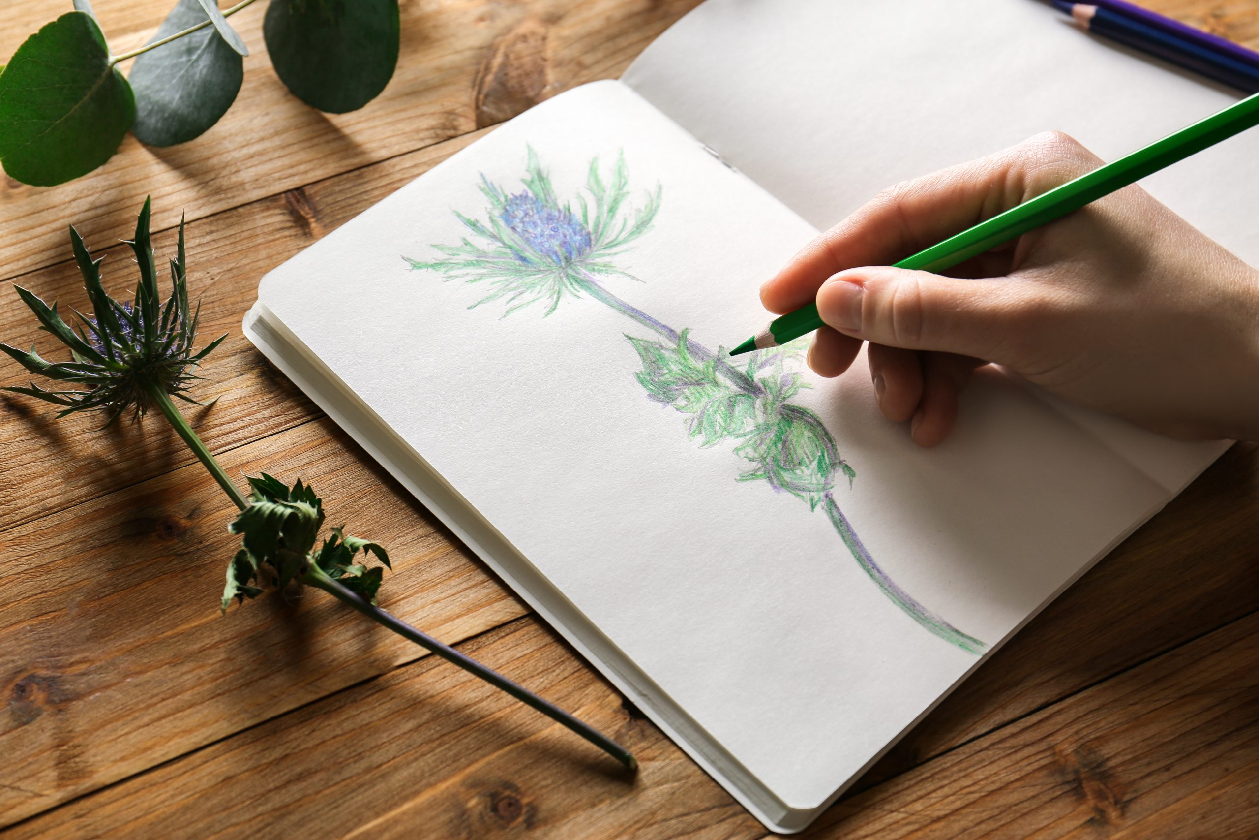 How to Keep Pencil Sketches From Smudging in a Sketchbook